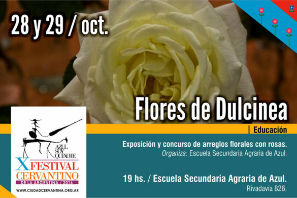 28-y-29-10-flores-de-dulcinea
